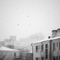 А за окном... :: Елена Емельянова