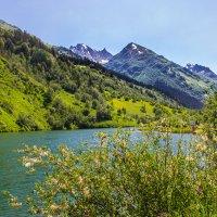 Озеро Туманлы Кель :: Elena Ignatova