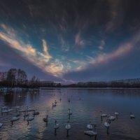закат на лебедином озере :: Елена Маковоз