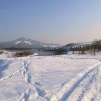 По свежевыпавшему снегу февраля :: galina tihonova