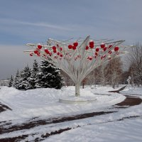 В зимнем парке.... :: LORRA ***