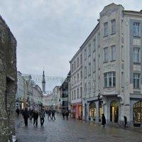 Таллинские зарисовки :: veera (veerra)
