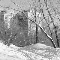 Вид на жилой дом :: Валерий Михмель