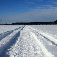 Зимняя дорога :: OlegVS S