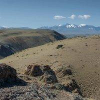Вид на Южно-Чуйский хребет :: Валерий Михмель