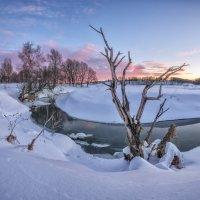 Сухое дерево на берегу реки :: Николай Андреев