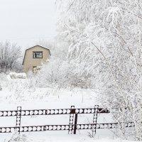 Одиноко :: Андрей Щетинин