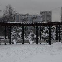 наш зимний парк :: Галина R...