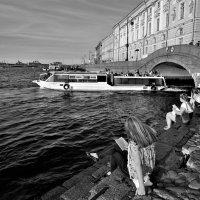 Читающий город. :: Лариса Красноперова