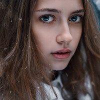 Портрет в холодных тонах. :: Дина Агеева