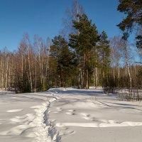 Конец зимы :: Андрей Дворников