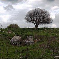 Земля, дышащая историей. :: Lmark