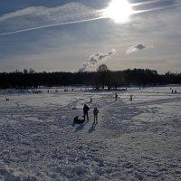 Зимний день :: Михаил Рогожин