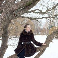 Зимняя прогулка по парку. :: Сергей Гутерман