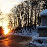Солнечное утро. :: Нина Бурченкова.