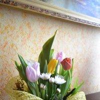 Весна :: Tamariks Barhotki