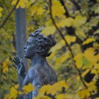 Осень в парке :: Ольга Попова (popova/j2011)