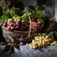 Корзинка с виноградом :: Татьяна Карачкова