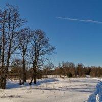 Конец зимы 2 :: Андрей Дворников
