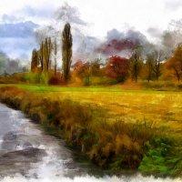 Осенняя зарисовка у ручья :: Waldemar F.