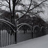 зимой  в парке :: Галина R...