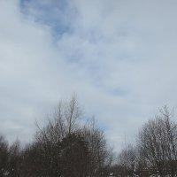 Весна, а небо уже весеннее... :: Валюша Черкасова