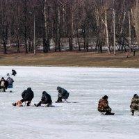 Рыбаки :: Анатолий Колосов