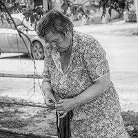 За пенсией... :: Наталья Новикова