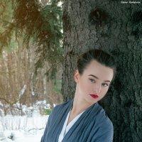 В зимнем лесу. :: Сергей Гутерман