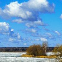 Небо весеннее :: Попкова Александра