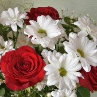 Цветы. :: Наталья