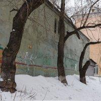 Затерянный дворик :: Валерий Михмель