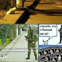 Про кошку Машку, которая не кiт, и вежливых людей... :: Кай-8 (Ярослав) Забелин