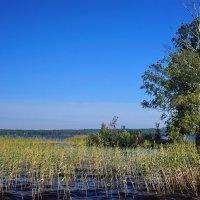 Озерная синь :: Юрий Шувалов