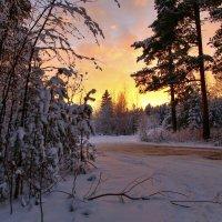 Зимняя сказка :: Сергей