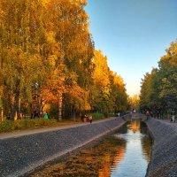 Осень в городе :: Александр Шишин