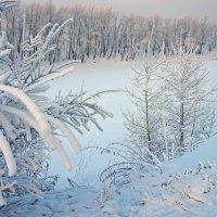 Холодный январь :: Екатерина Торганская