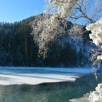 Мороз крепчает. :: Валерий Медведев