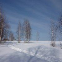 Последние морозы :: Ольга