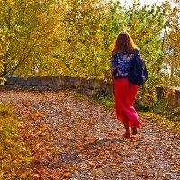 Lady in Red... :: Екатерина Торганская