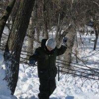 В марте :: Дмитрий Никитин