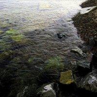 Вода и камни :: Людмила