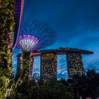Gardens by the Bay, Singapore :: Олеся Семенова