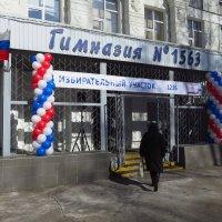 Она идет выбирать Президента :: Андрей Лукьянов