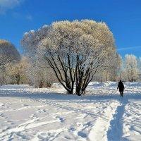 По снежной тропинке... :: Sergey Gordoff