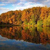 Деревьев кроны золотые под шёпот ветра шелестят.  В отображеньи молодые, как много лет тому назад. :: Alex