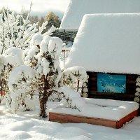 зимний домик :: Александр