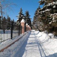 О прогулках в марте.. :: Андрей Заломленков