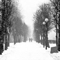 март.снег. :: vlad alferow