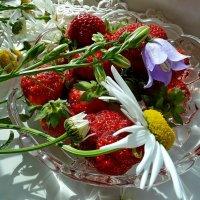 Лето на подоконнике... :: Лидия Бараблина